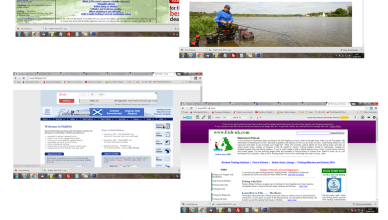 Fishing Websites