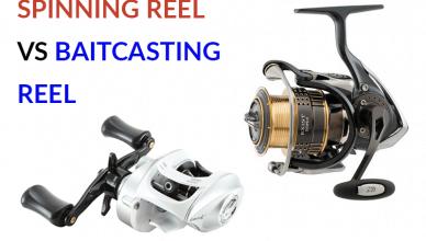 best-baitcasting-reel